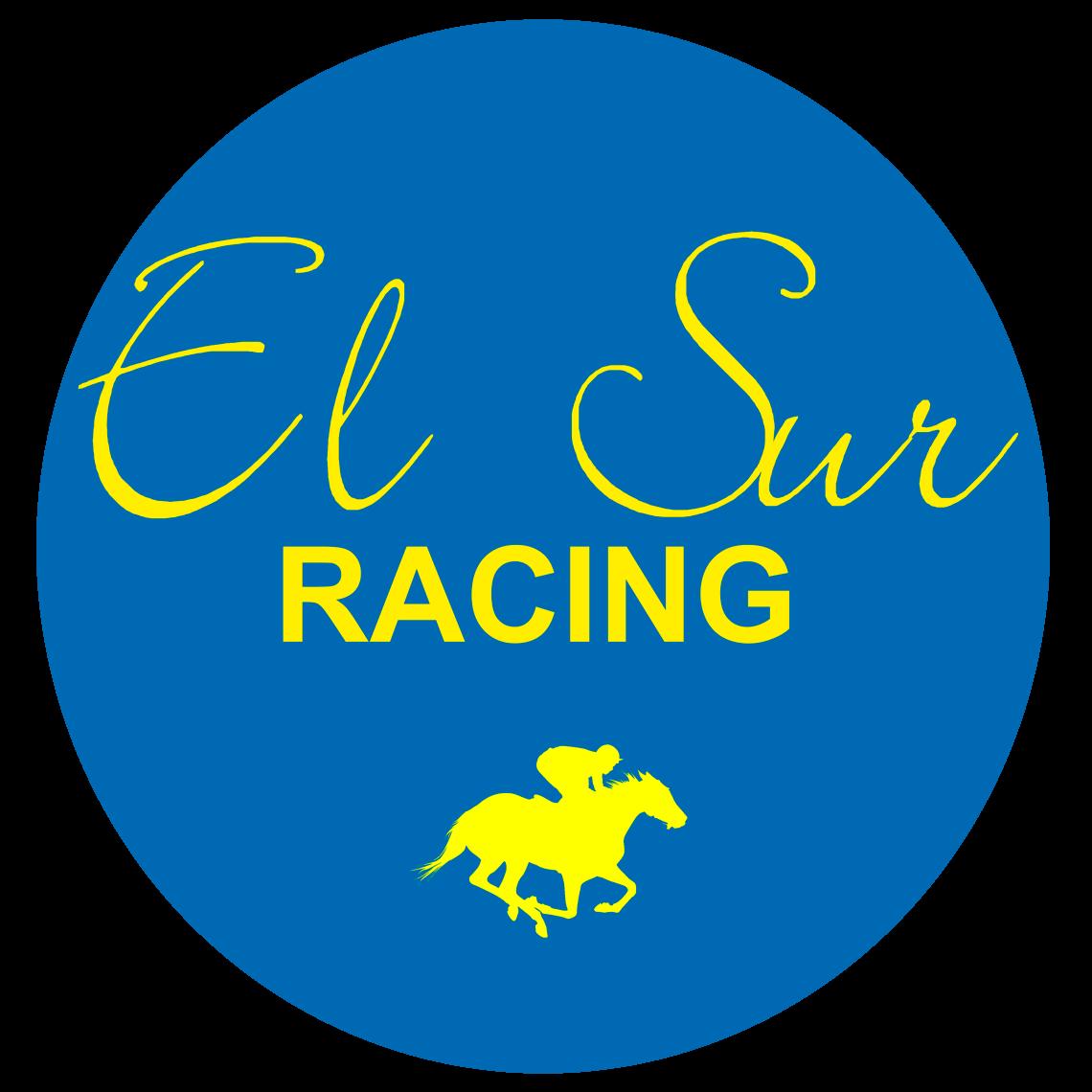 ElSur Racing