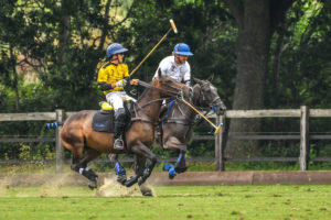 Polo Gold Cup 2020 Picture by R.Simon