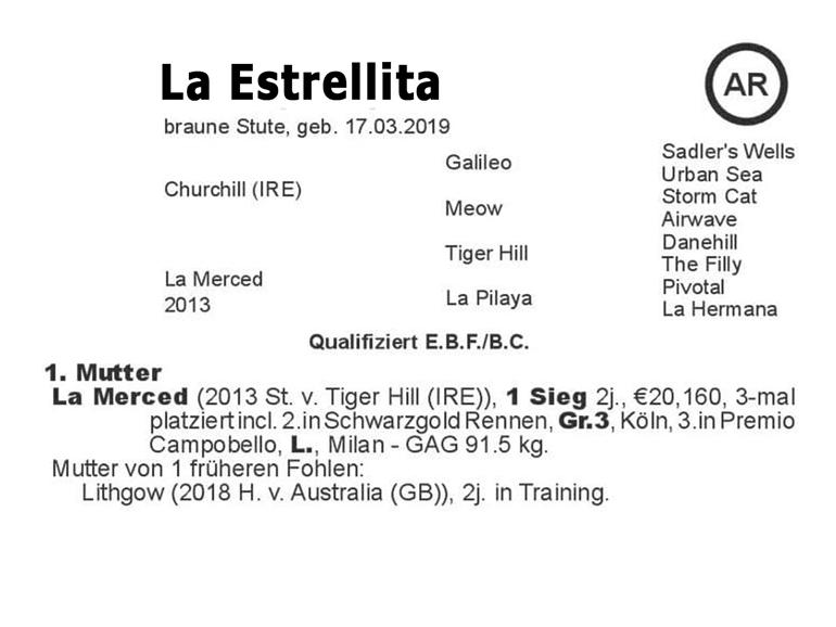 El Sur La Estrellita family tree