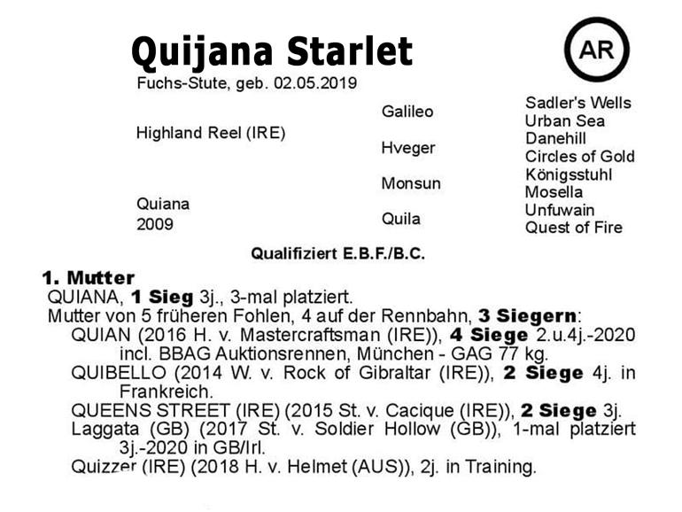 El Sur Quijana-Starlet family tree