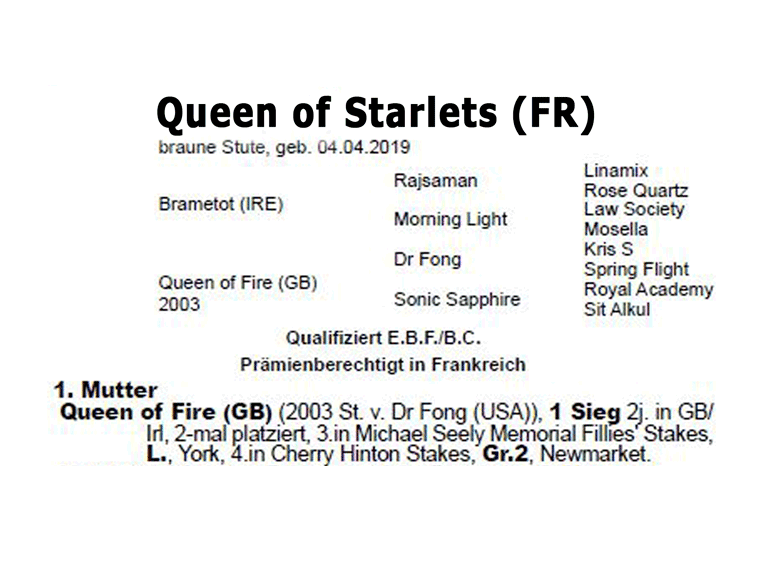 Queen of Starlets Arbre généalogique