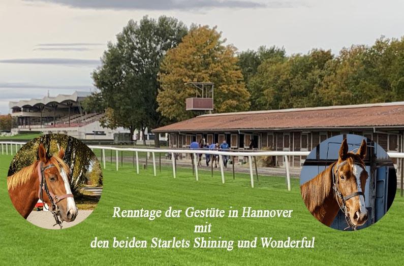Erstes GAG für Wonderful & Shining Starlet