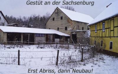 Stud at the Sachsenburg